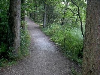Hartsee Wanderweg